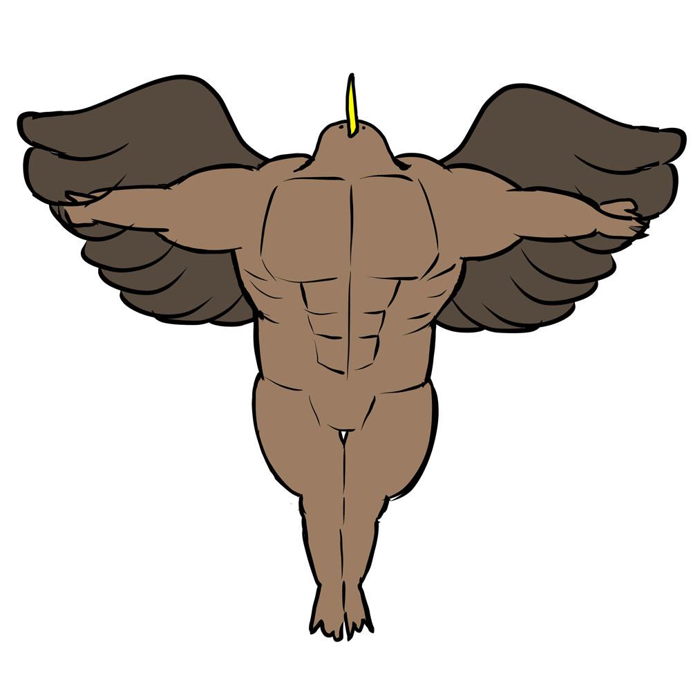 筋肉と羽の添削